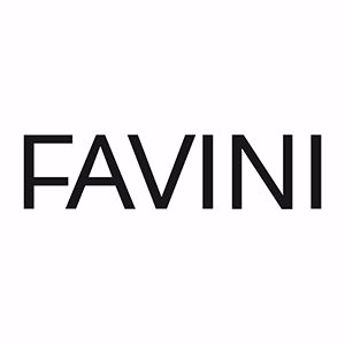 Picture for manufacturer Favini