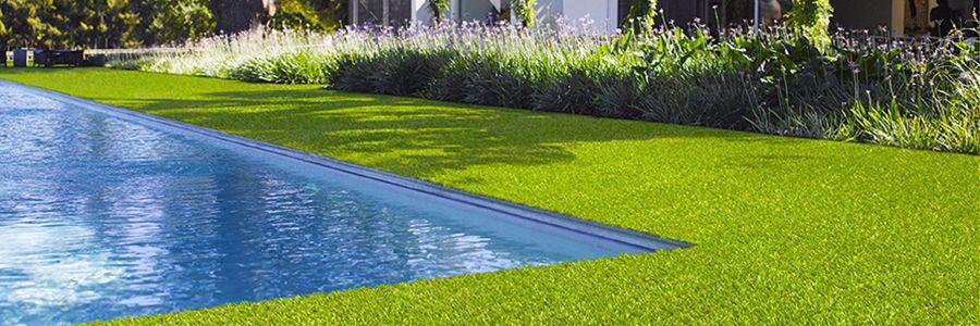 L'erba (sintetica) del vicino...