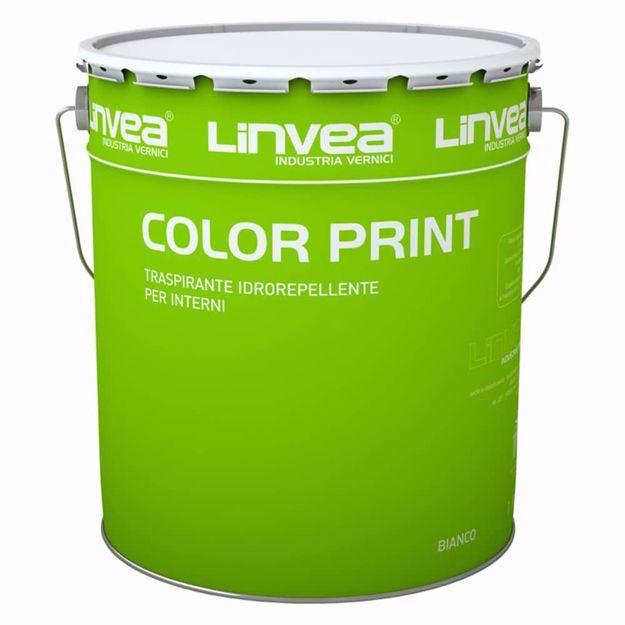 Color-print_Angelella