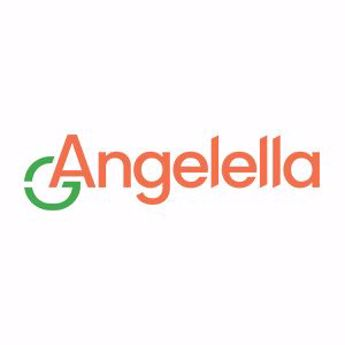 Picture for manufacturer ANGELELLA